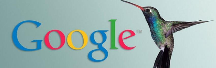 Что такое фильтр Колибри от Гугл? Как соответствовать требованиям Google Hummingbird: SEO алгоритмы